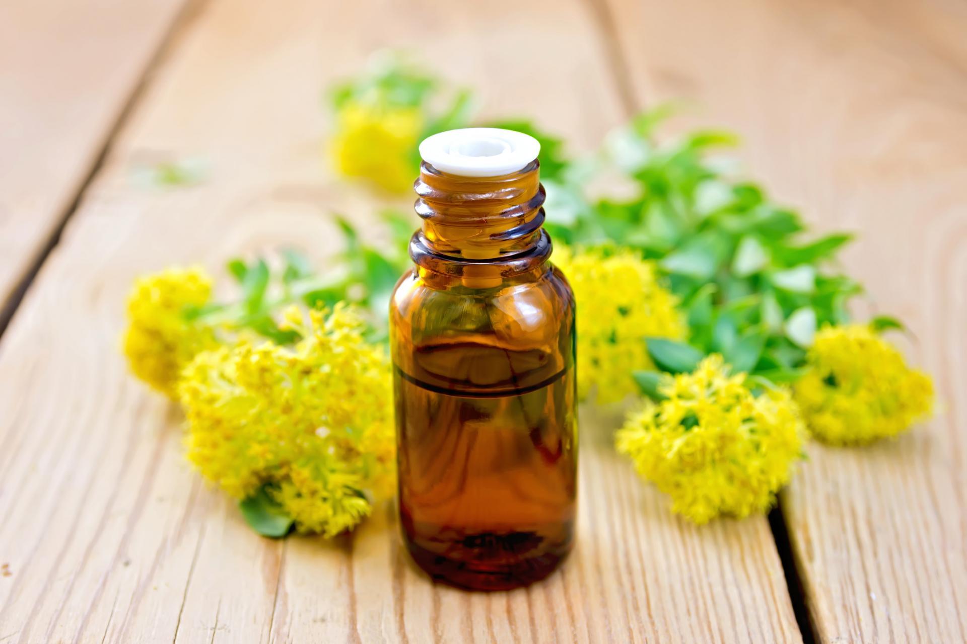 Эфирное масло пачули: свойства, применение, запах, отзывы