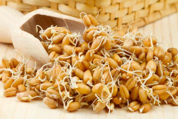 Пшеничные ростки