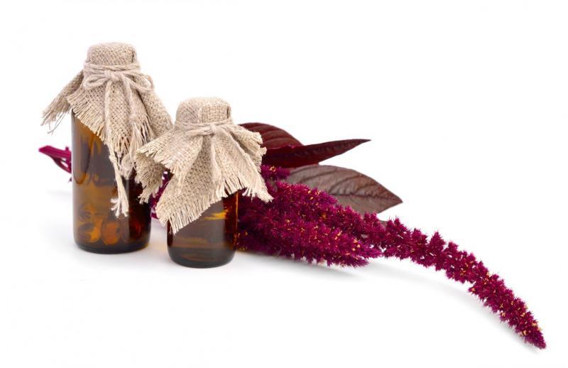 Амарантовое масло: полезные свойства и применение в медицине и косметологии