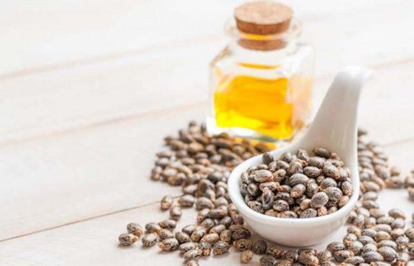 Семена клещевины и касторовое масло