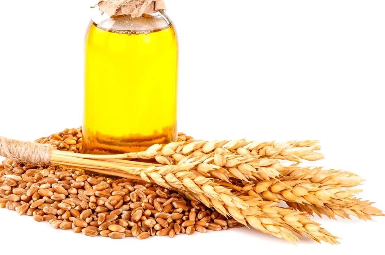 Масло зародышей пшеницы: применение в уходе за волосами