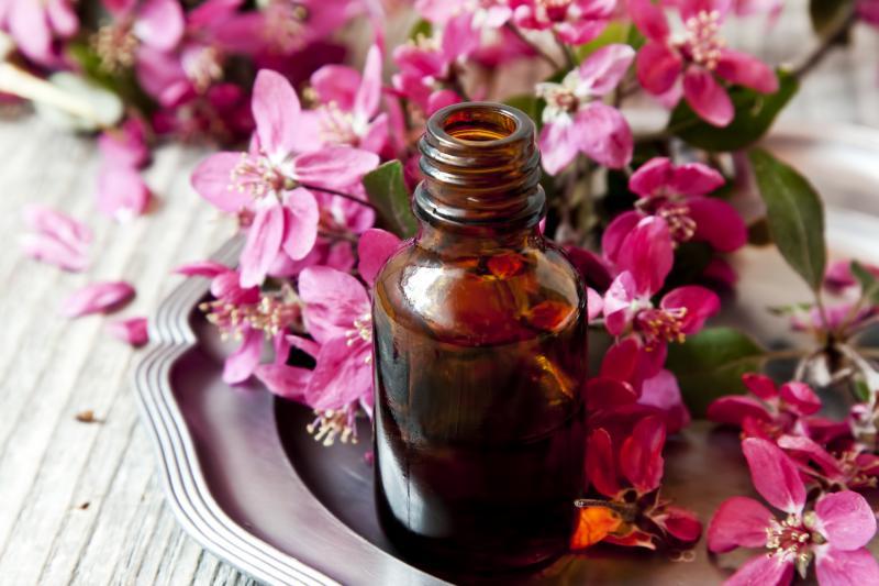 Маслогерани – зелёный аромат здоровья