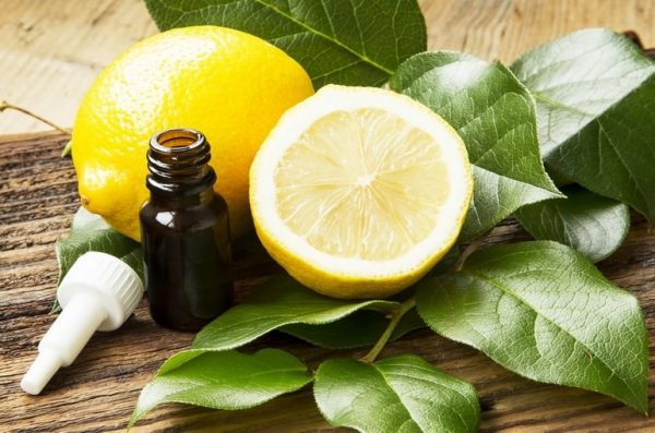 Эфир лимона в тёмном флаконе и плоды в разрезе