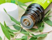Эфирное масло чайного дерева в тёмном флаконе и растение