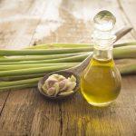 Эфирное масло лемонграсса в прозрачном флаконе и растение