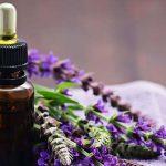 Эфирное масло шалфея в тёмном флаконе и растение