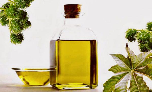 Касторовое масло в прозрачных ёмкостях и растение