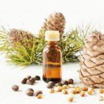 Кедровое эфирное масло в тёмном флаконе и растение