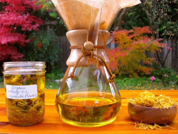 Масло календулы в прозрачных ёмкостях и цветы