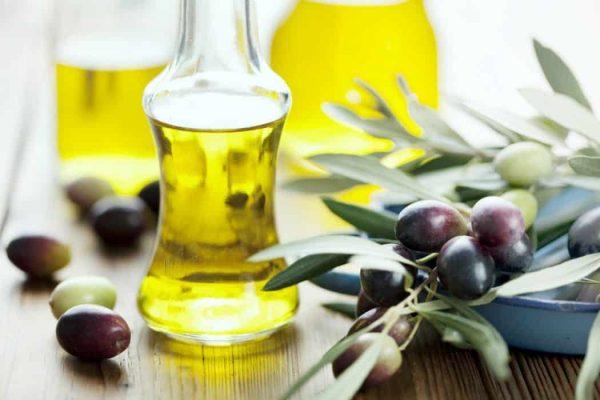 Оливковое масло в прозрачных бутылках и растение