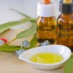 Эфирное масло эвкалипта в тёмном флаконе и растение