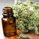 Эфирное масло тимьяна в тёмном флаконе и растение