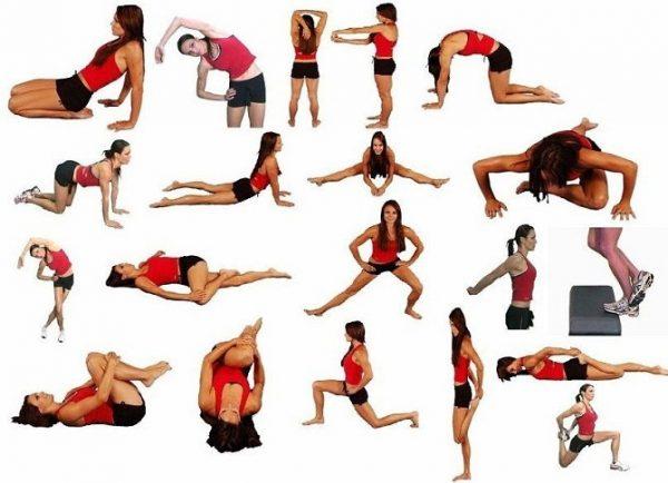 Базовые упражнения стретчинга
