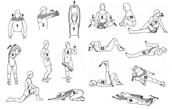 Комплекс упражнений для растяжки мышц рук