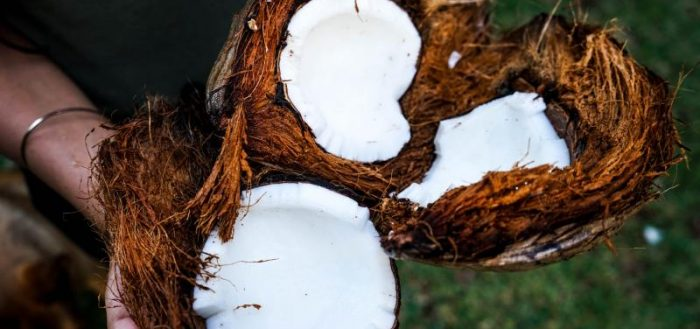 кокосовые орехи