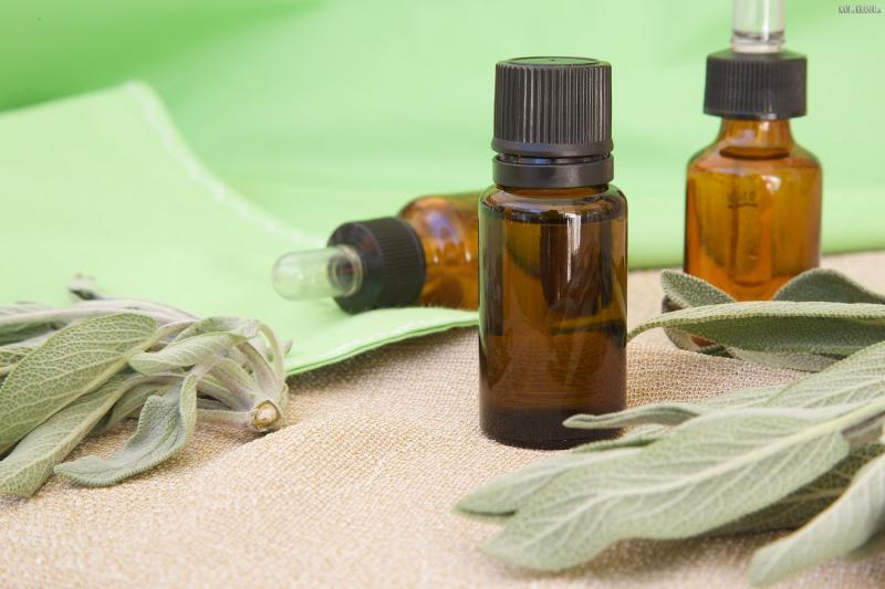 Камфорное масло — восточный секрет здоровой кожи лица и роскошной шевелюры