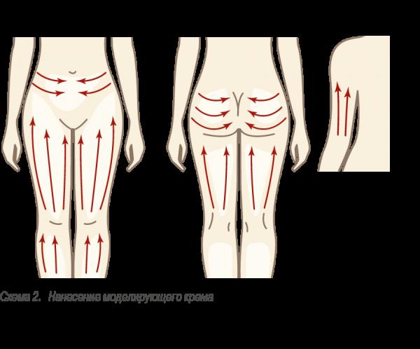 Схема массажа бёдер, живота и ягодиц