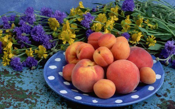 Абрикосы и персики