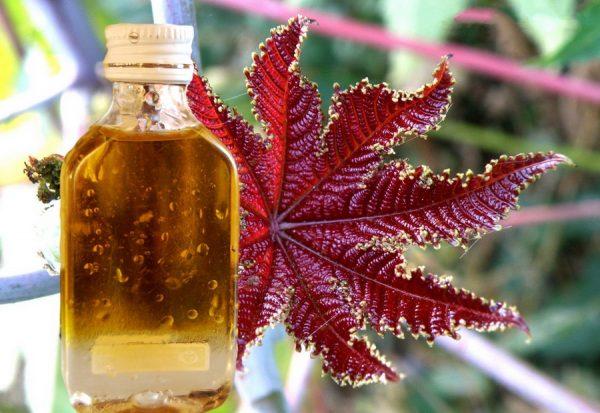Касторовое масло в прозрачном флаконе
