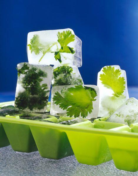 Кубики льда с петрушкой