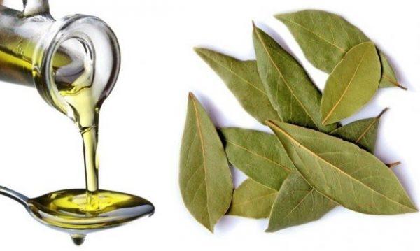 Масло (слева) и листья (справа) лавра