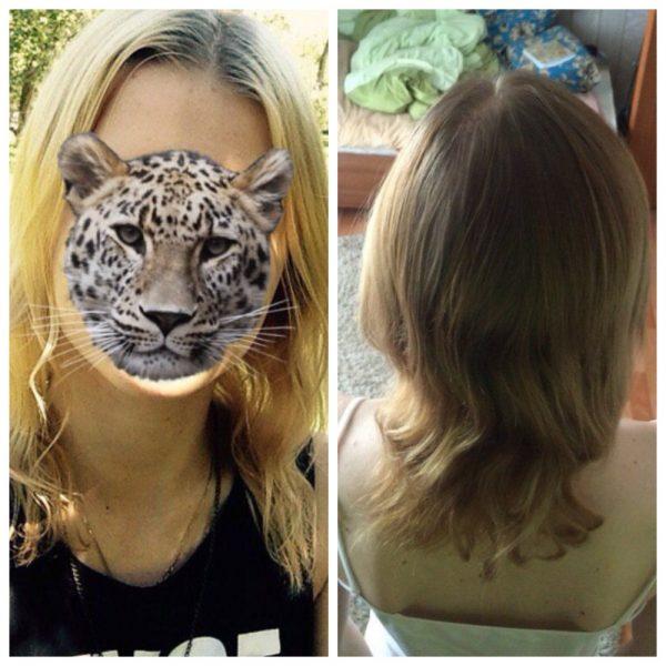 Волосы девушки до и после использования масляных масок с добавлением розмаринового эфира