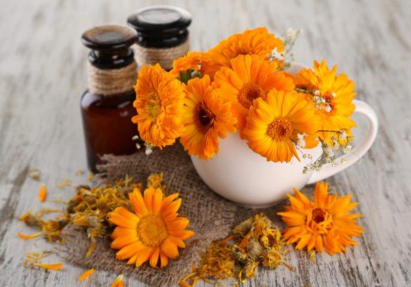 Масло календулы в тёмных флаконах и цветы