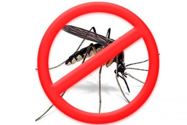 Перечёркнутое изображение комара