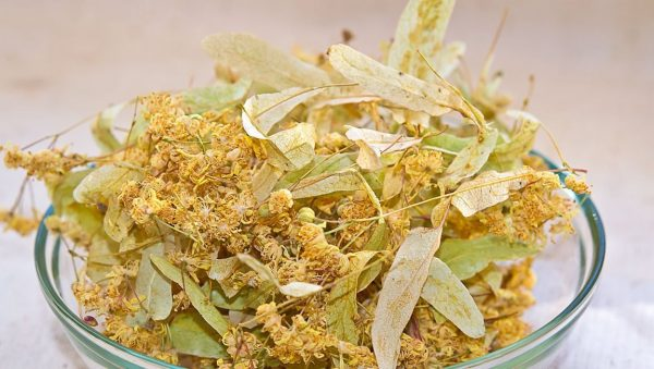 Сушёные цветки липы