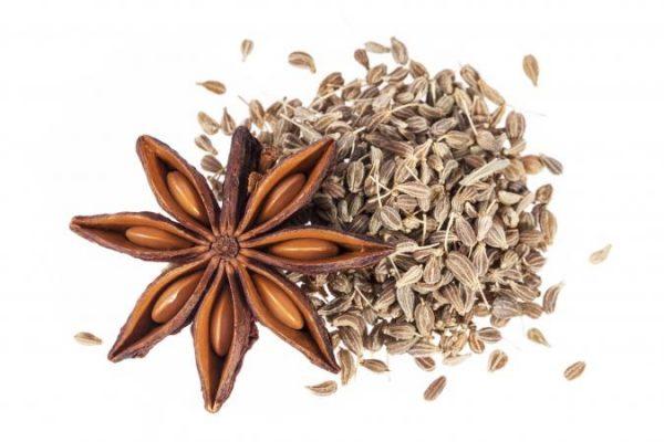 Звёздочка бадьяна и семена аниса