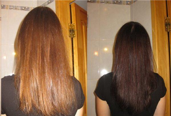 Волосы до и после окрашивания хной