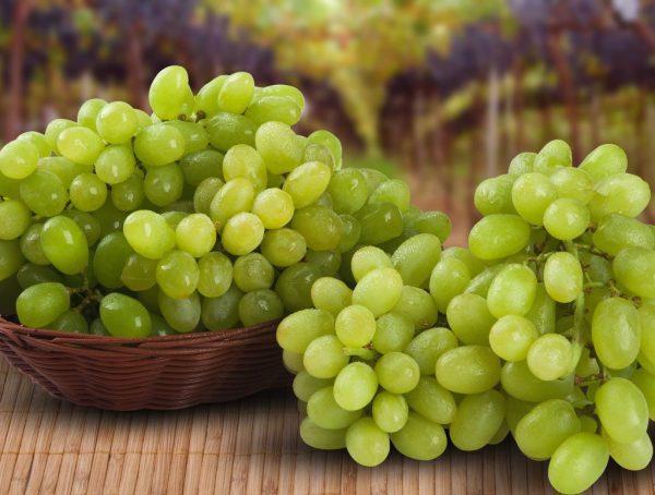 Гроздья винограда на столе