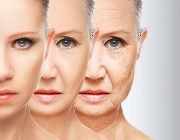 Иллюстрация с отображением возрастных изменений лица